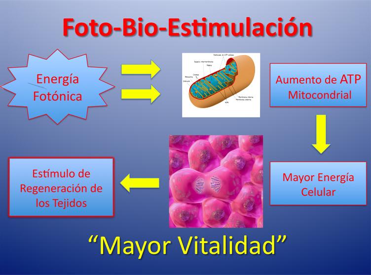 Foto-Bio-Estimulación
